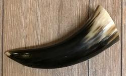 Trinkhorn - aussen poliert, innen lackiert - lebensmittelecht - ca. 0,1l
