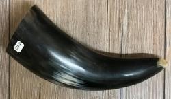 Trinkhorn - aussen poliert, innen lackiert - lebensmittelecht - ca. 0,2l
