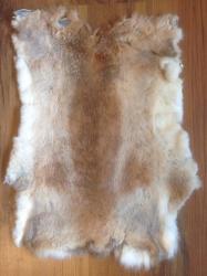 Felle - Kaninchen - natur - braun - ab 8€ pro Stück