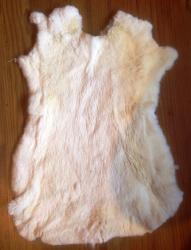 Felle - Kaninchen - natur - weiss - ab 7,50€ pro Stück